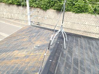 調布市 苔の生えた屋根