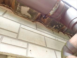 大田区 折板屋根屋根を伝い雨水の廻り込み