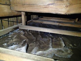江戸川区 雨水の浸水