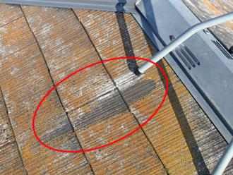 新宿区 屋根カバー工法前の点検 錆が流れた箇所には苔があまり生えていない