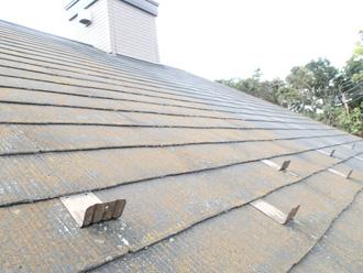 豊島区 屋根リフォーム前点検 屋根に苔が生えている