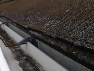 豊島区 屋根リフォーム前点検 苔が生えている