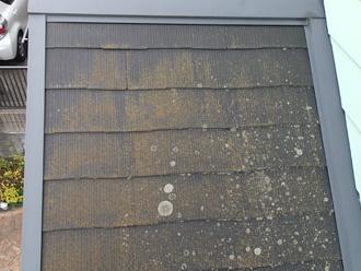 豊島区 屋根リフォーム前点検 下屋にも苔が生えている