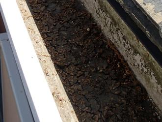 東京都北区 アパートの屋根塗装前の点検 雨樋に土砂がある