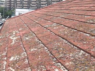 文京区 屋根の塗膜が剥がれている