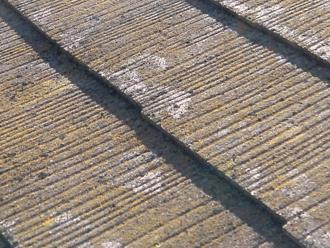 豊島区 屋根葺き替え工事前の点検 スレートに苔が生えている
