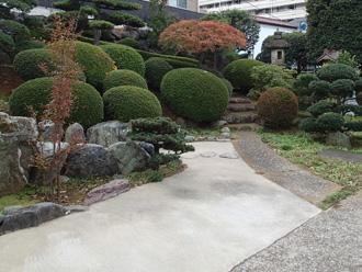 豊島区 屋根調査で訪問したお宅には美しい庭園がありました