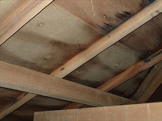 葛飾区 屋根からの雨漏り