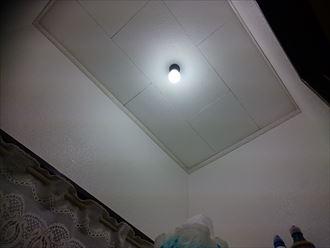 トイレクロス、天井塗装