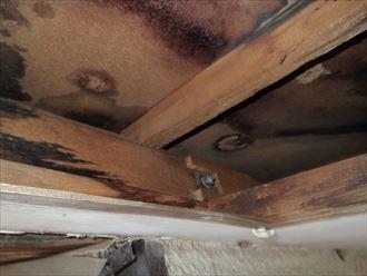 足立区 屋根からの浸水