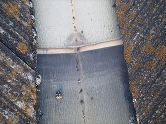 足立区 谷板金雨水排水不良