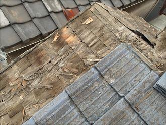 墨田区でパラペットの屋根葺き替え工事、杉皮の状態