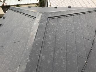 屋根全体に拡がる雹痕
