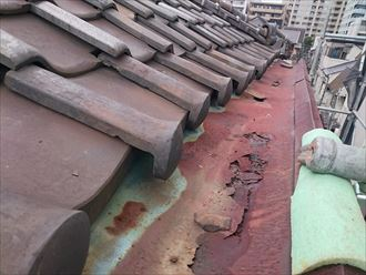 中央区トタン外壁台風被害005