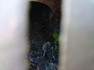 葛飾区屋上雨漏り調査006