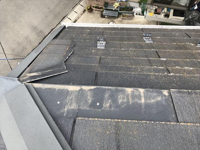 葛飾区台風被害