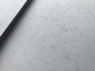 豊島区ひょう被害