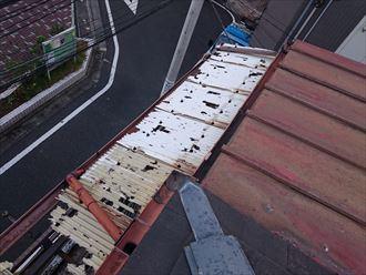 豊島区アパート雹災006