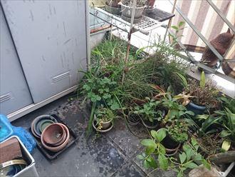 江戸川区雨漏り対策防水調査001