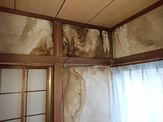 墨田区陸屋根雨漏り大001
