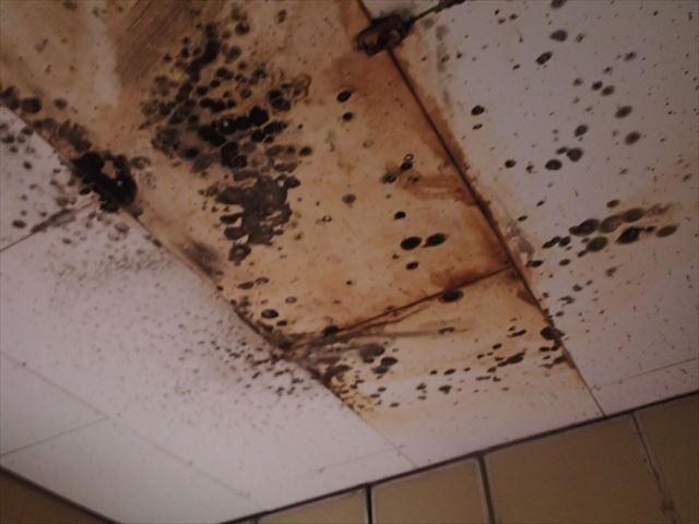 ベランダ下の部屋の雨漏り