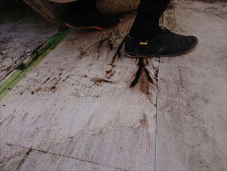 豊島区ベランダからの雨漏り004