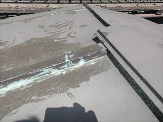 増築屋根自己流補修跡