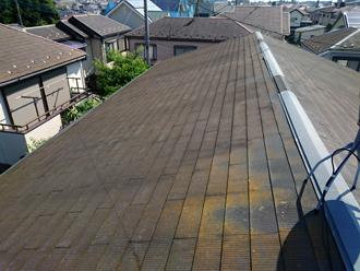 苔の発生したスレート屋根