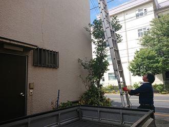 江戸川区屋上トタン屋根雨漏り003
