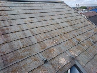狛江市の屋根点検