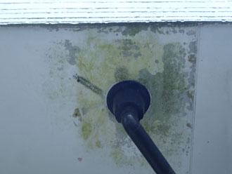 排水口周りの周辺の汚れ