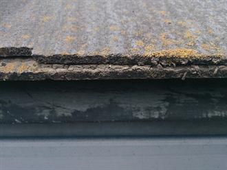 屋根端にて苔の付着