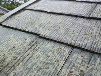 日野市でスレート屋根のコケについてのご相談、屋根の防水性を考え屋根塗装をご提案