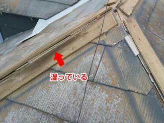 八王子市 棟板金の貫板が湿って傷んでいる