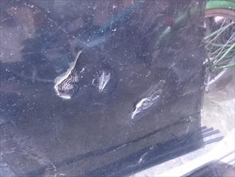 日野市で強風により剥がれてしまったバルコニーのポリカを張り直します
