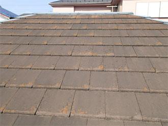 屋根材が四角い