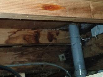 小屋裏の雨漏り跡