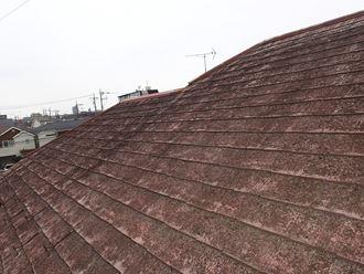 苔で汚れた屋根