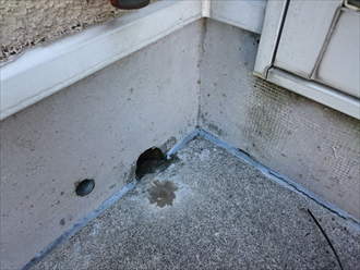 床の排水口は雨漏りしやすい