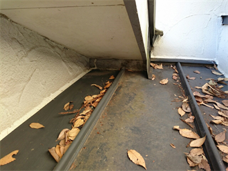 瓦棒の落ち葉