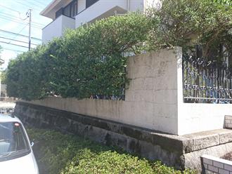 川崎市麻生区の擁壁調査