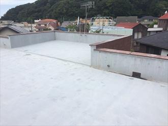 屋上(陸屋根)全体