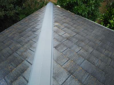 棟板金を全交換し、健全となった屋根