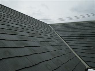 塗れたスレート屋根