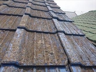 屋根に葺かれたセメント瓦