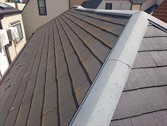 スレート葺き屋根の全景です
