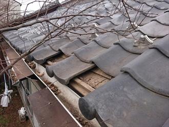 練馬区東大泉にて台風の強風で落下した瓦を葺き直します