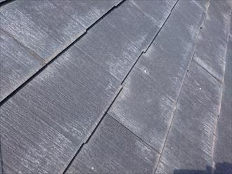 国分寺市北町で調査した屋根は、パミールからガルバリウム鋼板へ葺き替え工事します