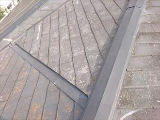 複雑に入り組んだスレート葺きの屋根