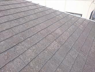 始めてメンテナンスするスレート屋根